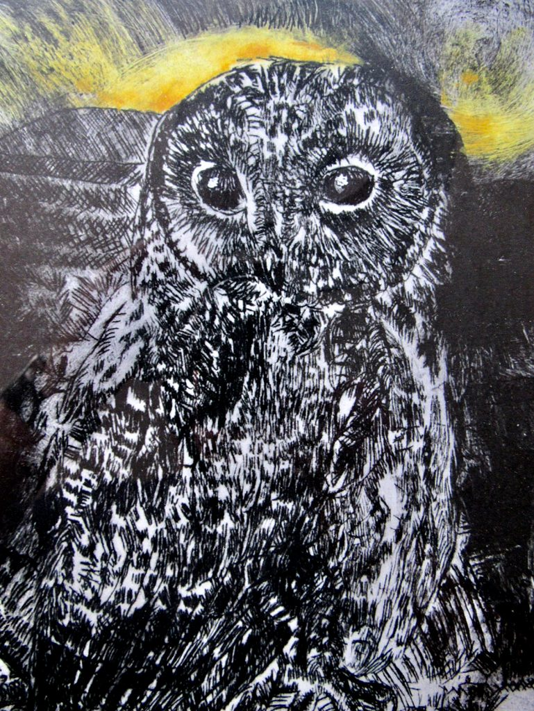 06-giclee-Owl
