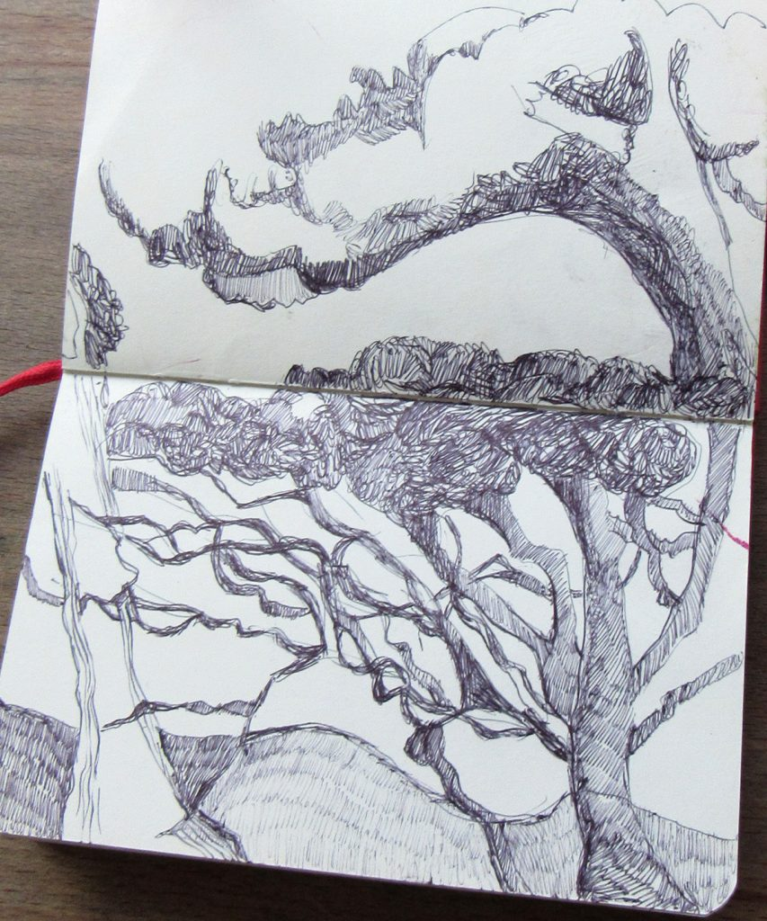 06-sketchbook