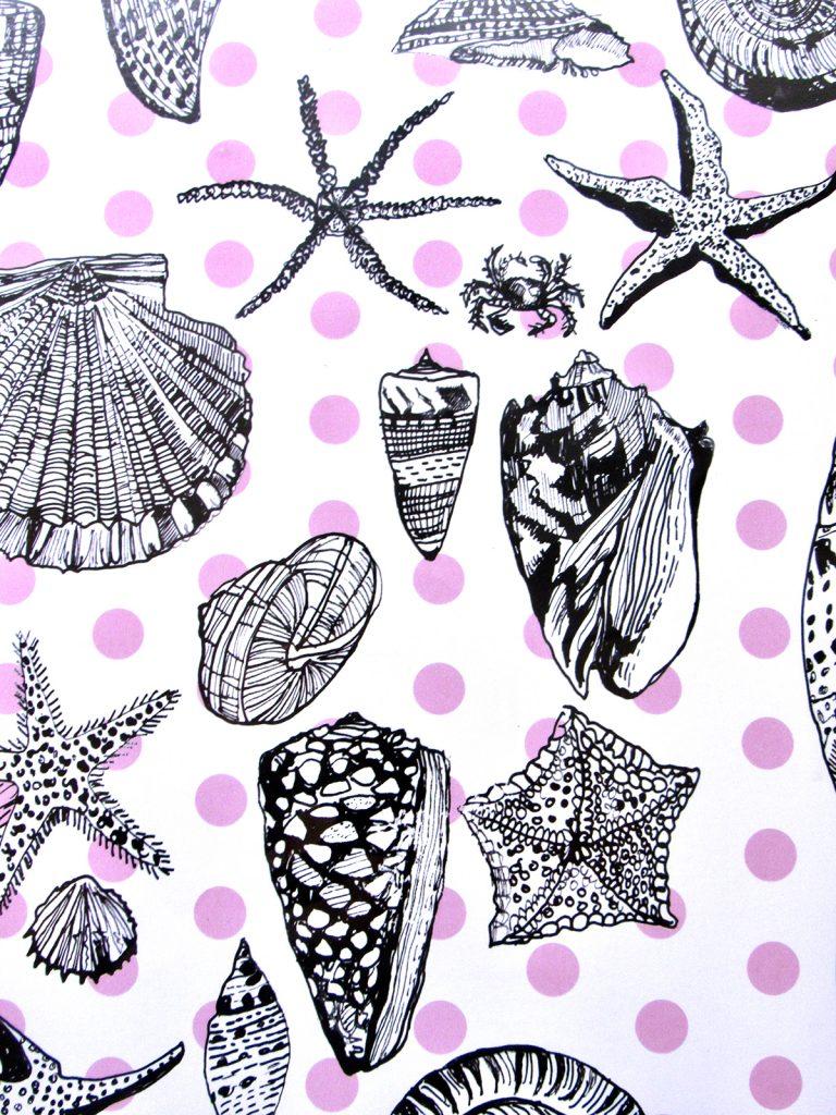 07-giclee-Sea-shells