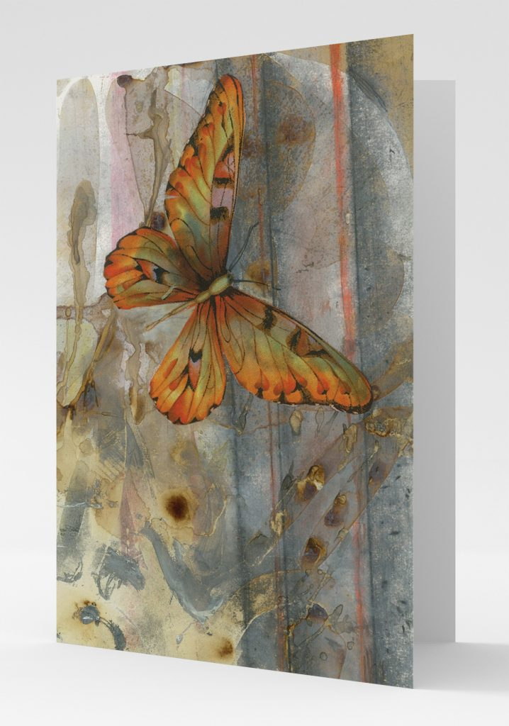 Brown-butterfly